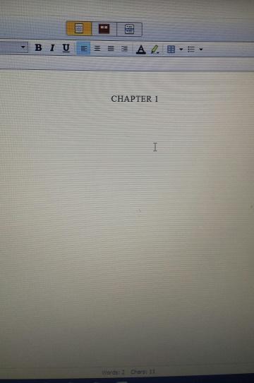 chapter 1 summer suspense